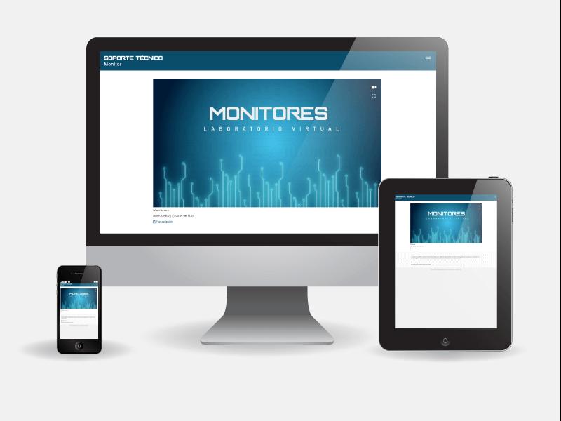 Detalle de Monitores - Soporte técnico