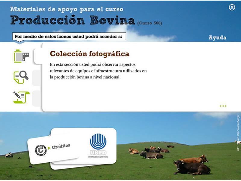Detalle de Producción bovina