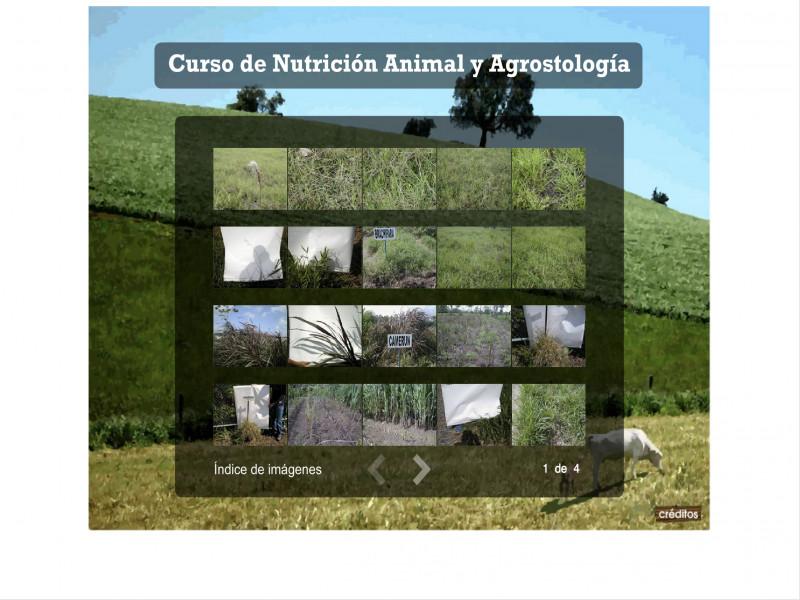 Detalle de Nutrición Animal y Agrostología